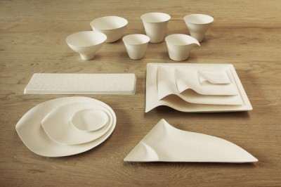 I never said disposable dishes weren't stylish and even biodegradable ... Photo credit: http://www.visualnews.com/2013/10/knew-disposable-plates-stylishly-designed-biodegradable-tableware-wasara/