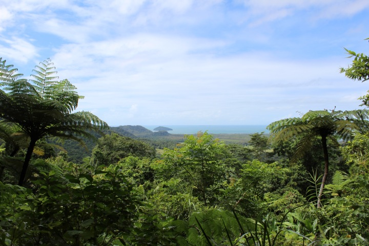 2016-04-20 Daintree and Cape Tribulation 04-1.jpg