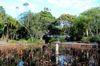 Royal Botanic Gardens-4