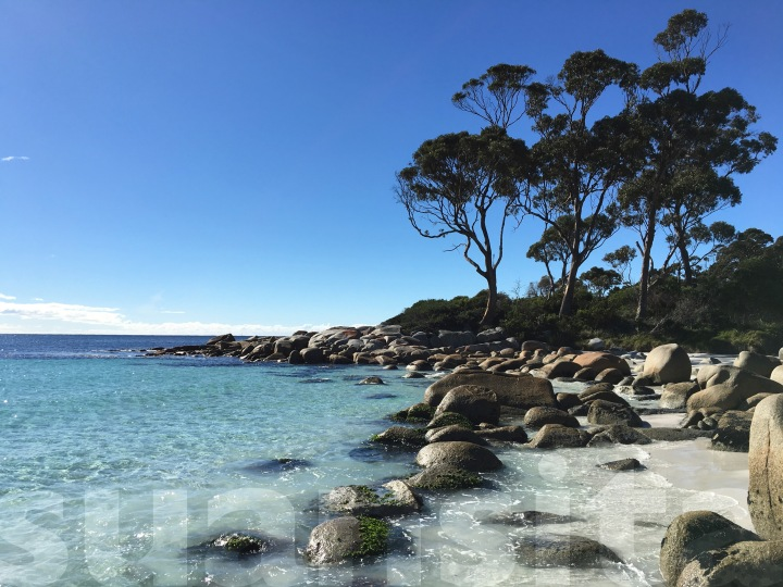 2017-04-27 Day 4b Bay of Fires 10
